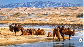 mongoliawintertours.com