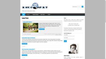 bionicspirit.com