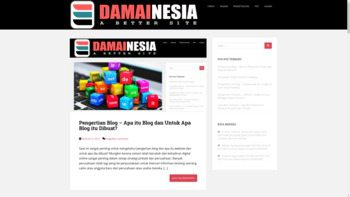 damainesia.com